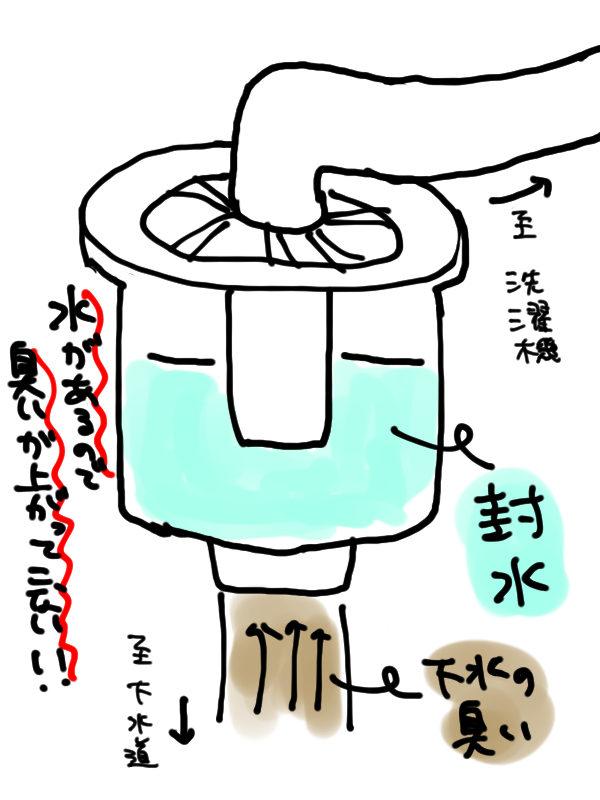 洗濯機 排水口 封水あり
